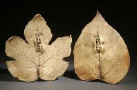 Double Leaf Spirits